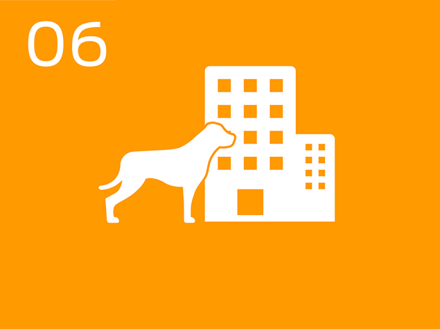 06 dog at office building infographic