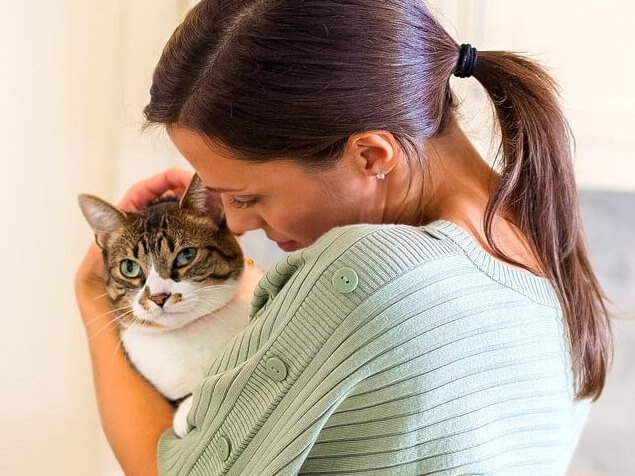 Frau streichelt Katze