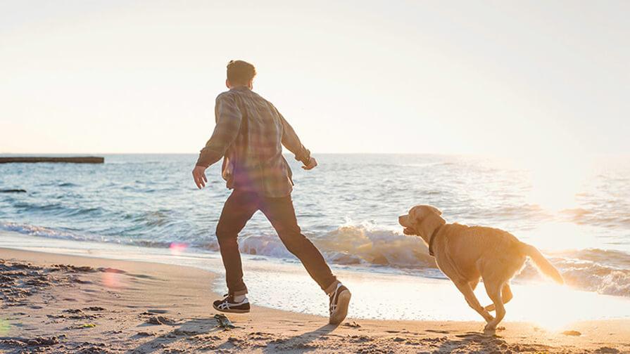 Mann läuft am Strand mit Hund