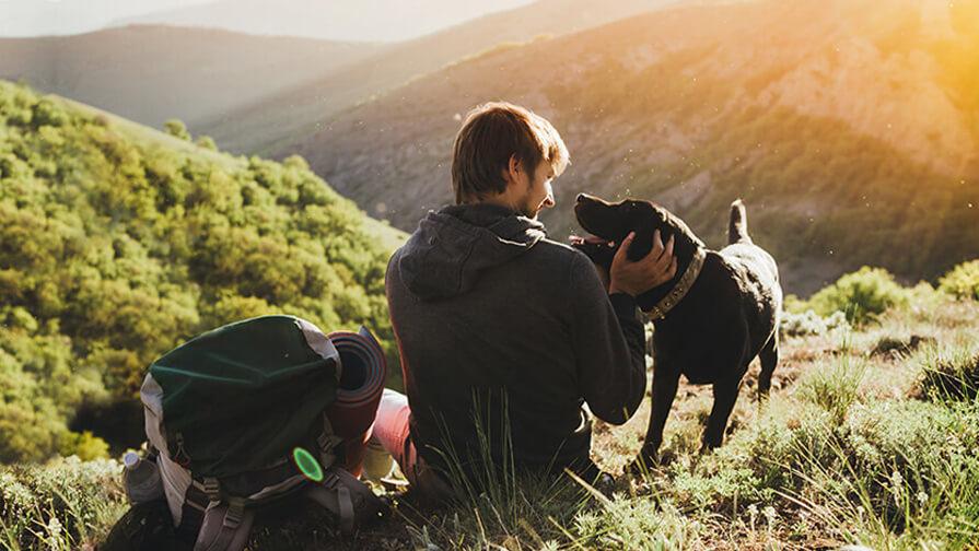 Mann sitzt in Bergen mit Hund