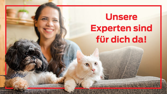 Expertenrat Teaser Frau mit Hund und Katze