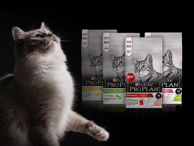 PRO PLAN Katze Trockenfutter