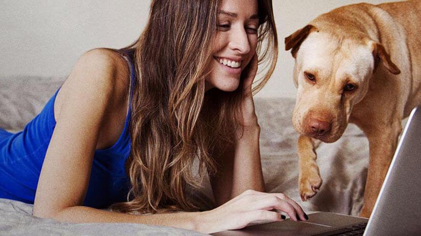 Eine Frau schaut mit ihrem Hund auf einen Laptop